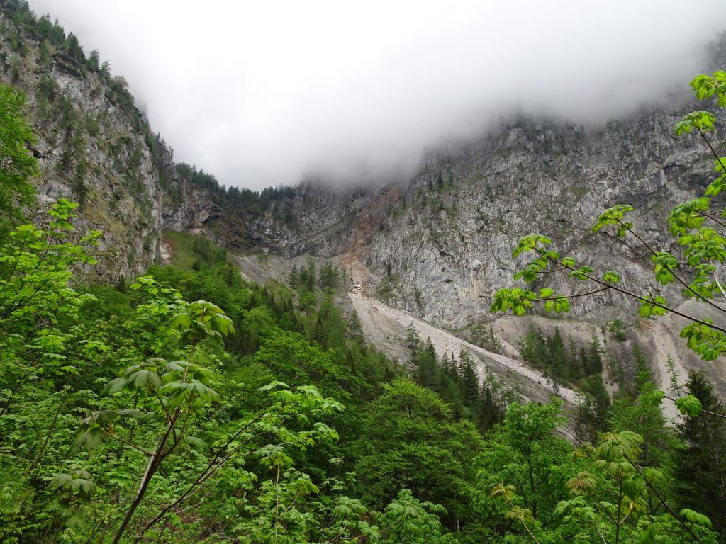 View towards Gaislochsteig