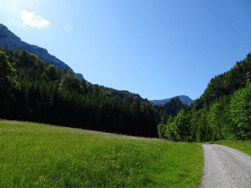 Beautiful scenery on the trail towards Wildfährte