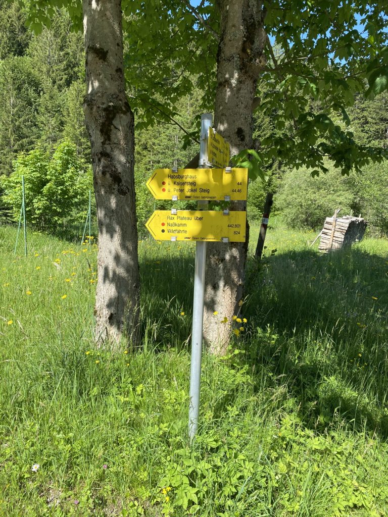 Signpost showing the way (Wildfährte 824)