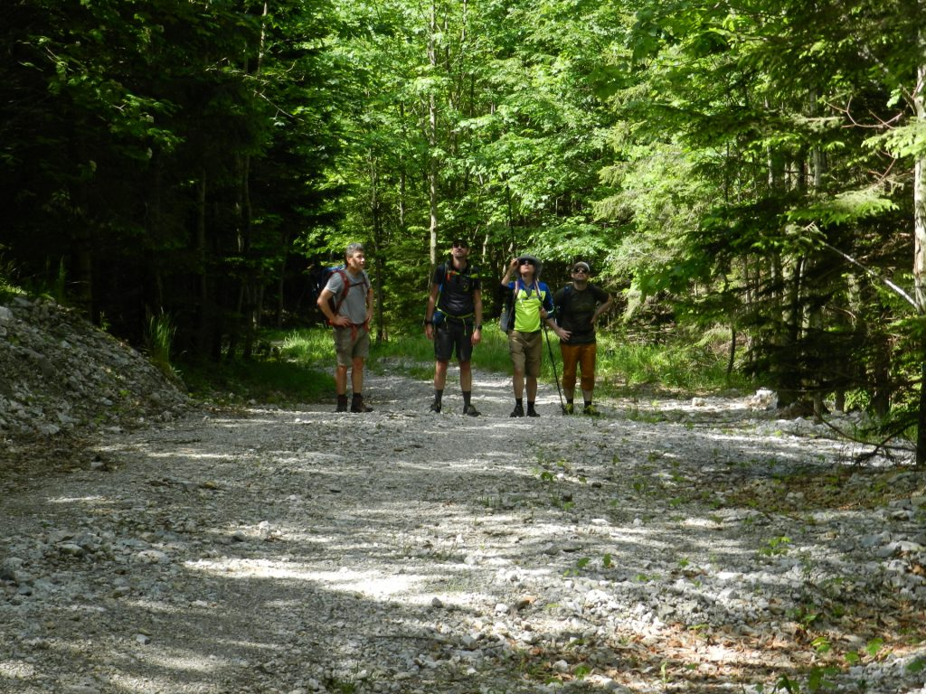 Nader, Stefan, Herbert and Predrag are inspecting the trail