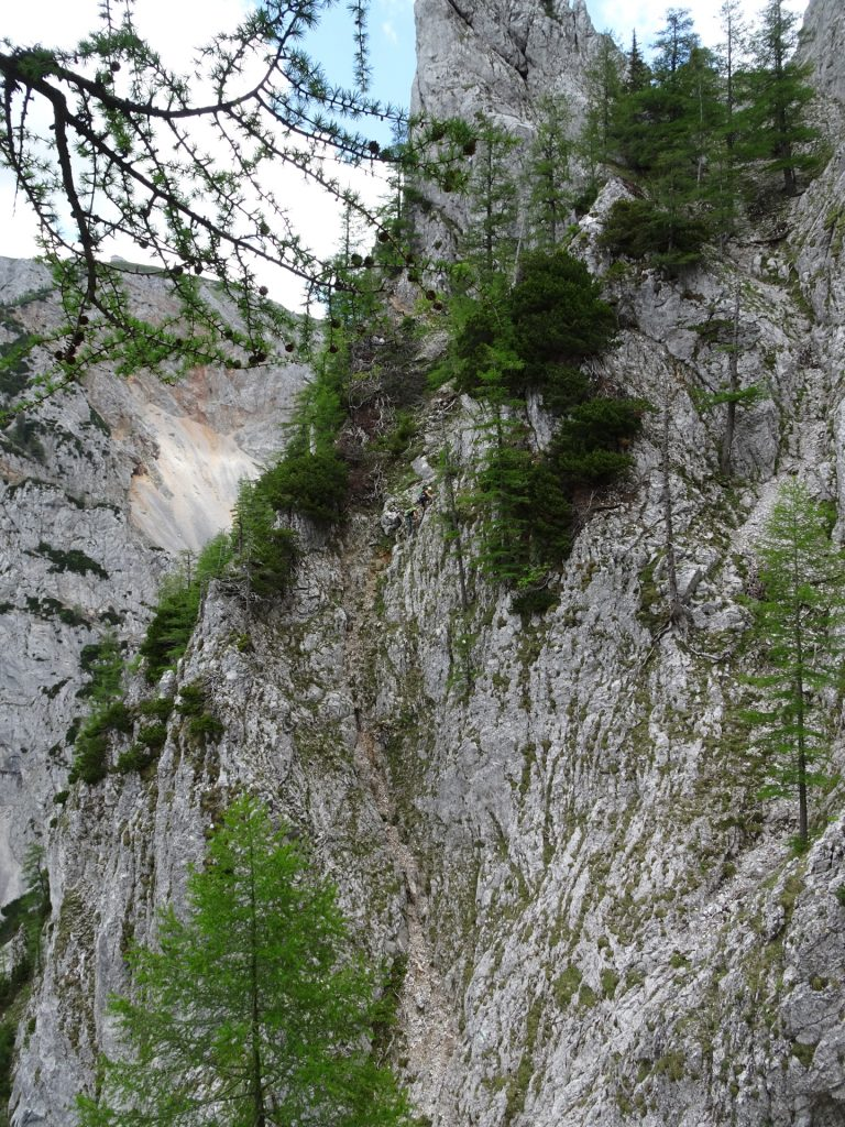 The Bärenlochsteig via ferrata