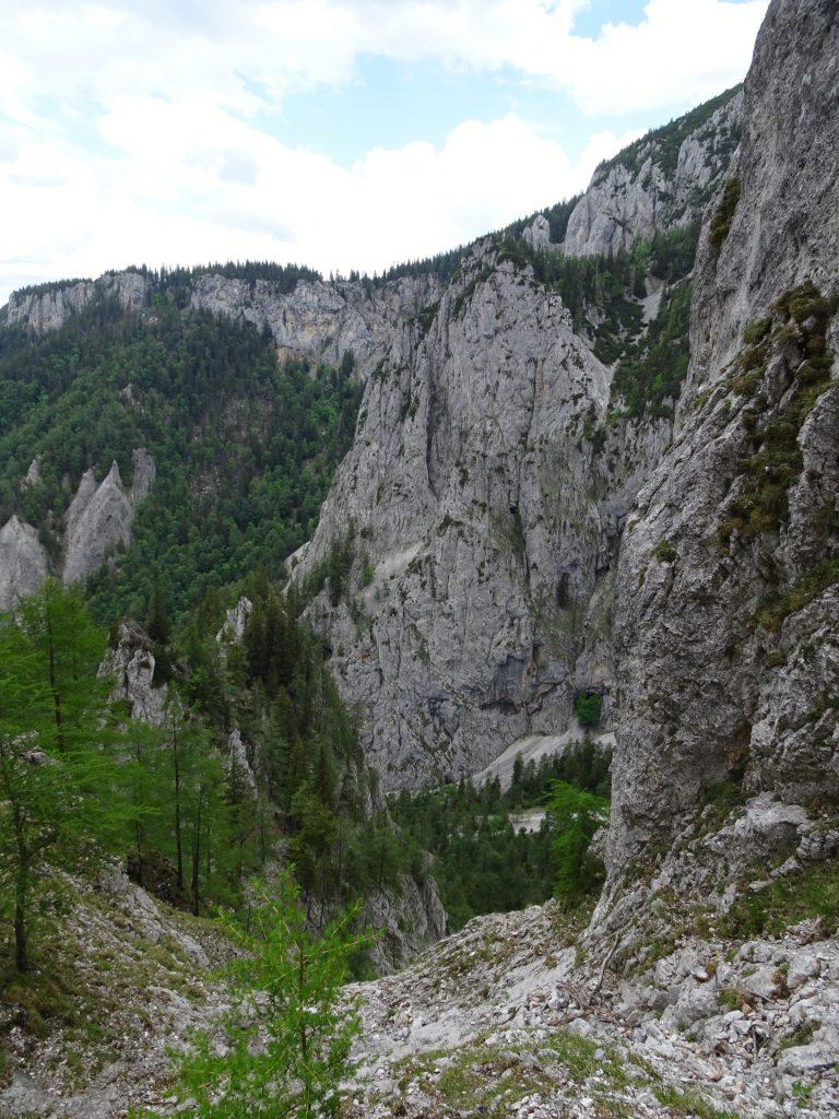 View from Bärenlochsteig