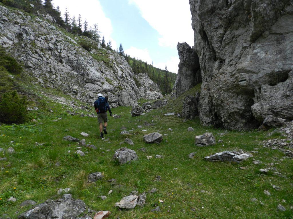 Trail towards Ochsenhaltweg (direction Habsburghaus)