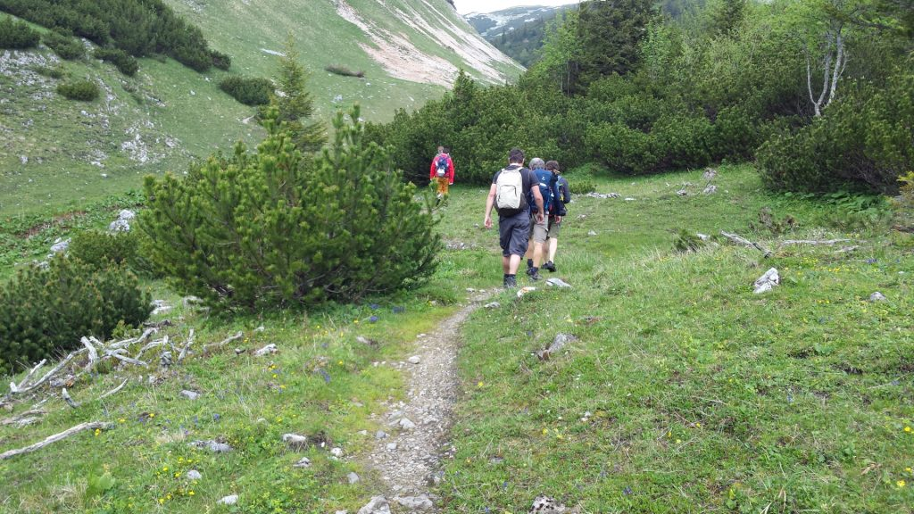 Trail towards Habsburghaus
