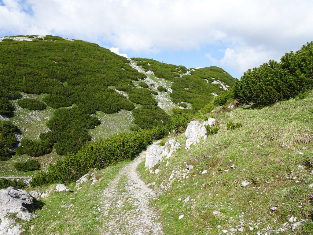 Descending via Kaisersteig