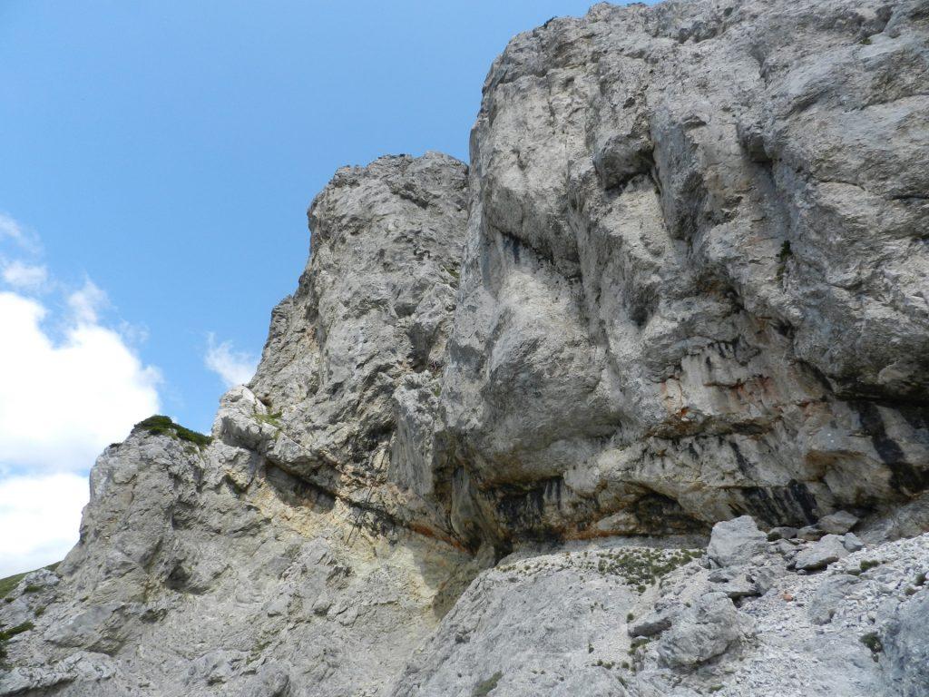 Traverse towards the 2nd climbing tree