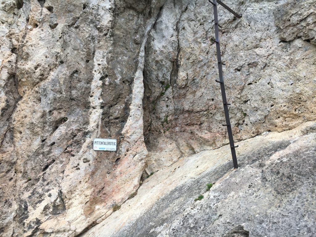 "The climbing tree marking the begin of the \""Pittenaler Steig\"" via ferrata"