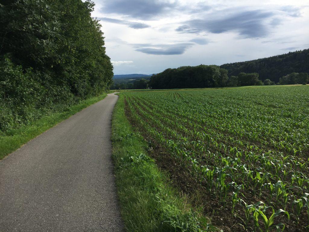Way back to Gleißenfeld