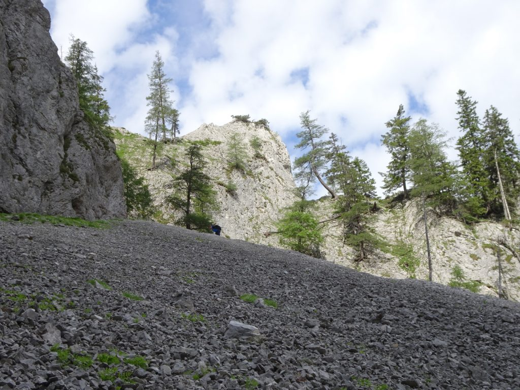 Scree field shortly before the start of Wildfährte