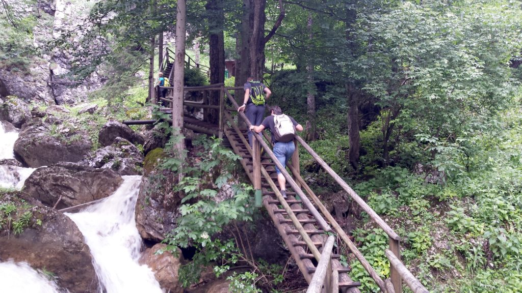 Nadja, Stefan and Robert hiking up the wooden ladders along the river