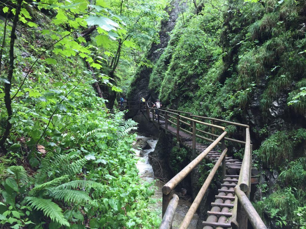 Impressive hike via the wooden bridge at the upper part