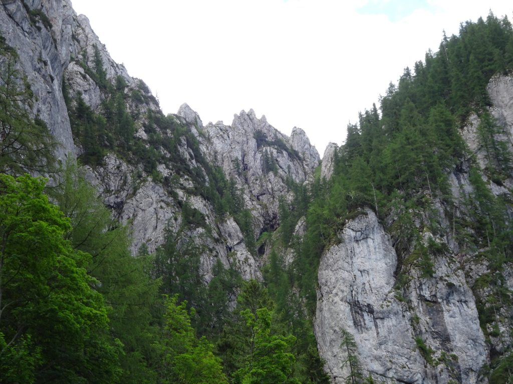 The route of the via ferrata