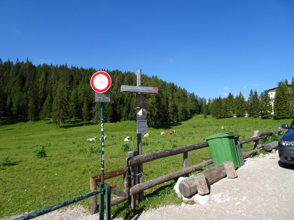 Starting Point - follow trail 216