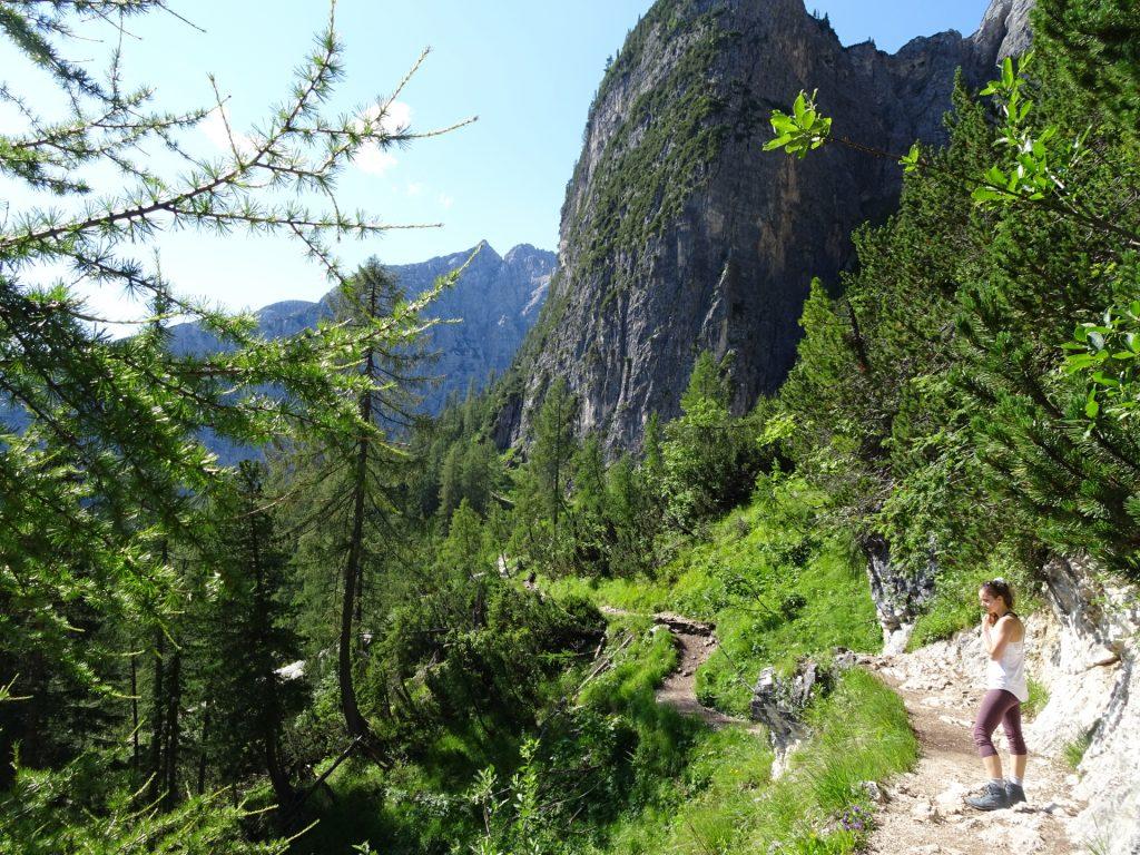 Trail 216 towards Sorapissee