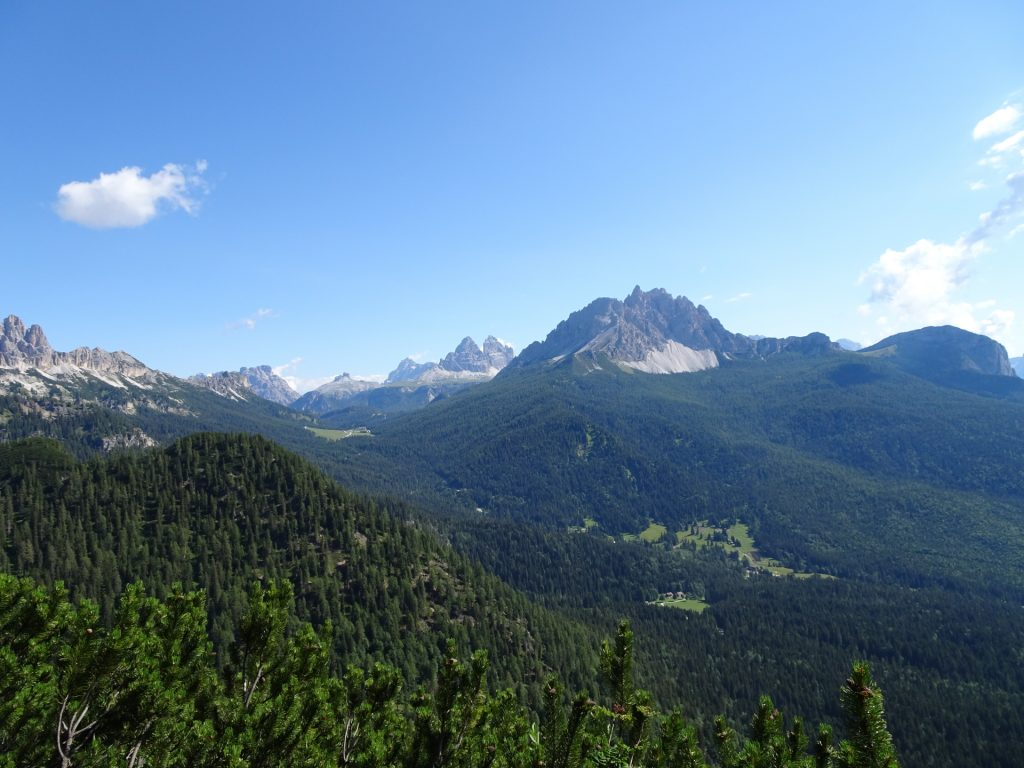 Amazing surround view from the trail