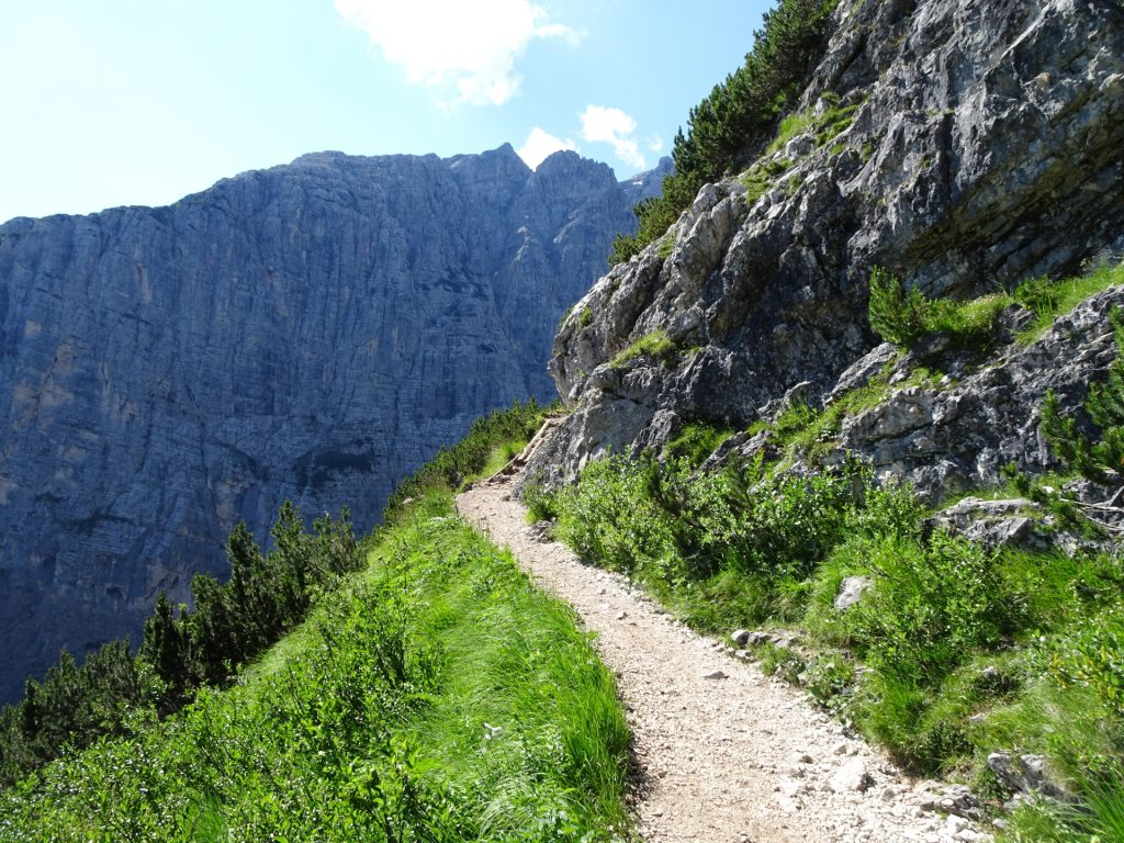 Trail gets narrower and more alpine