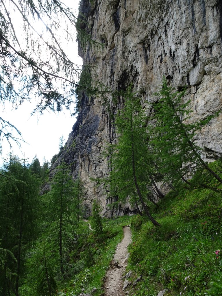 Trail towards the first part of the ferrata
