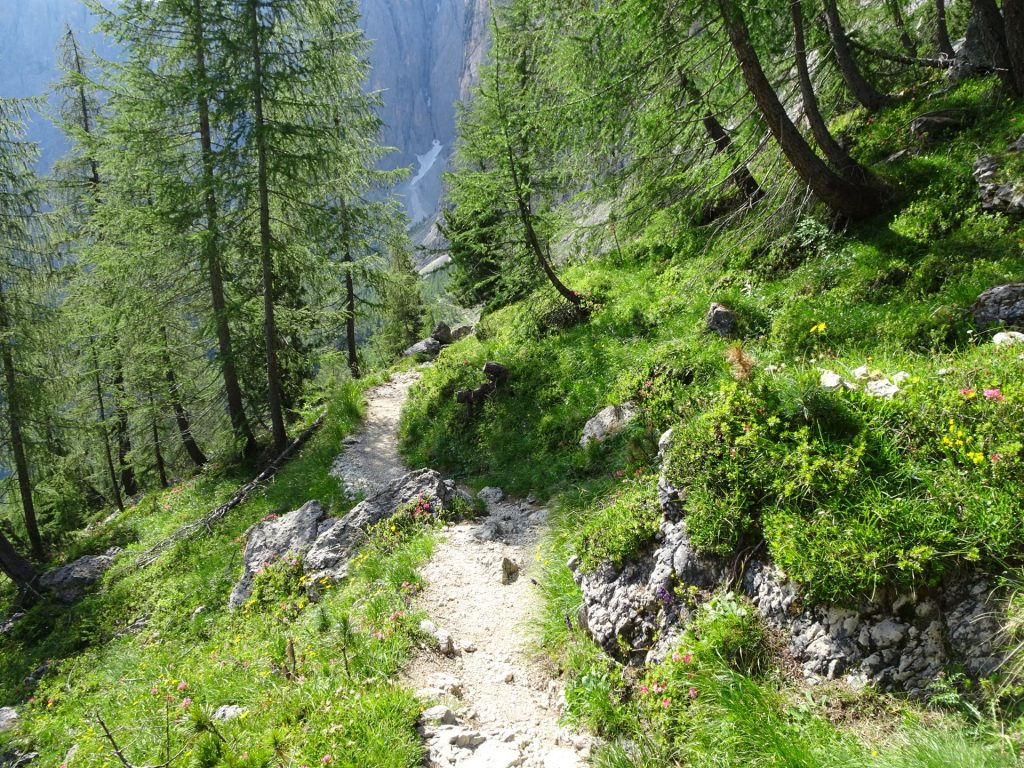 Trail towards the second part of the ferrata