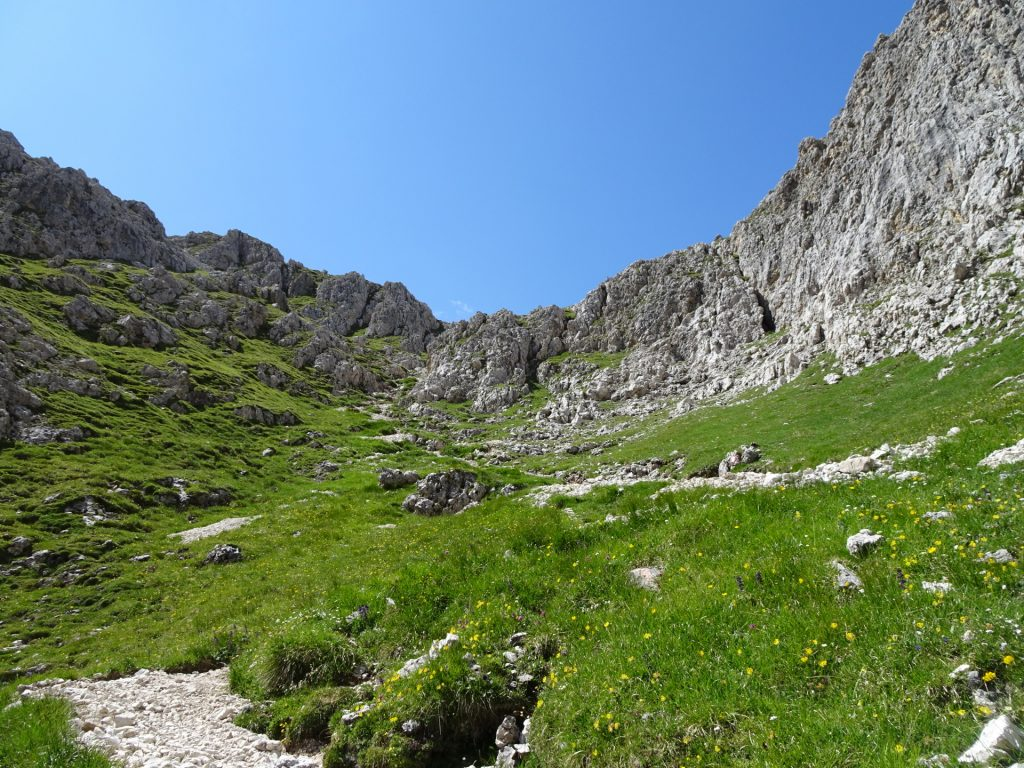 View back (amazing mountain scenery)