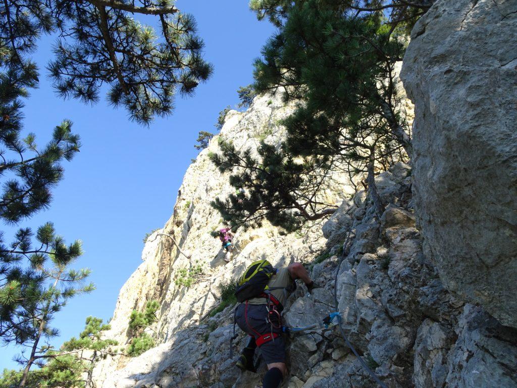 "GV-Steig: Towards the ""Weningerwand"" (2 - 3)"
