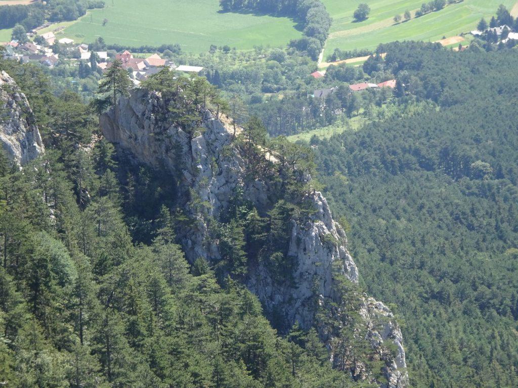 "View back towards the GV-Steig (Weningerwand) from the ""Große Kanzel"""