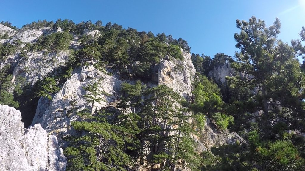 View towards the second part of the ferrata (see the climber in the middle!)
