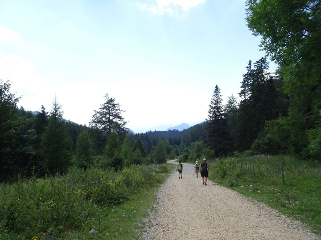 "Following the road towards ""Guter Hirte"""