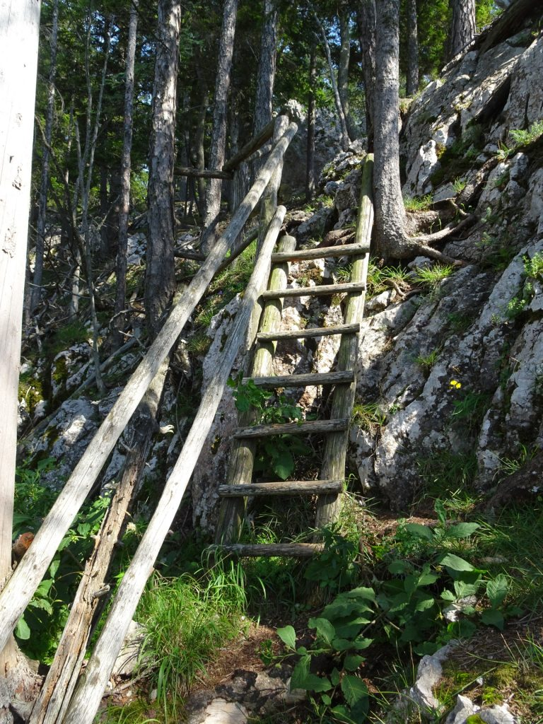"The wooden ladder from / to ""Rannerwand"""