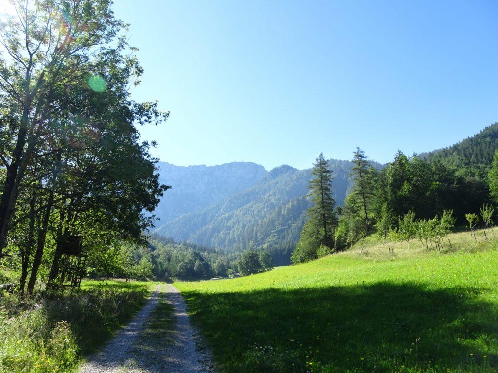 On the trail towards Kaisersteig and Widlfährte