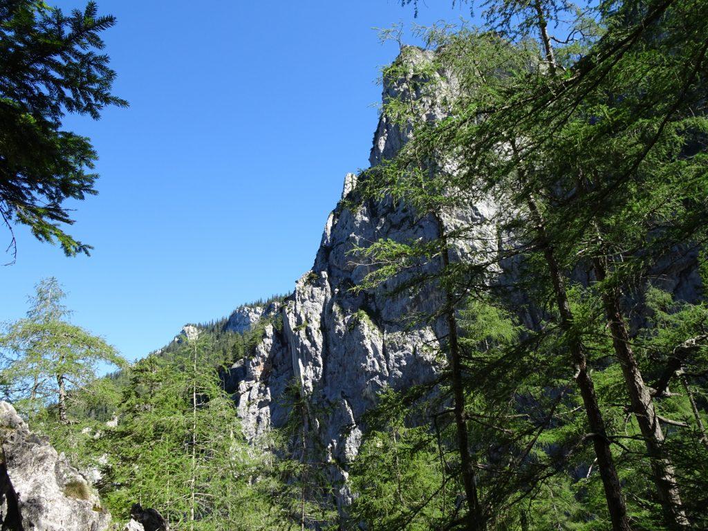 View from trail towards Wildfährte