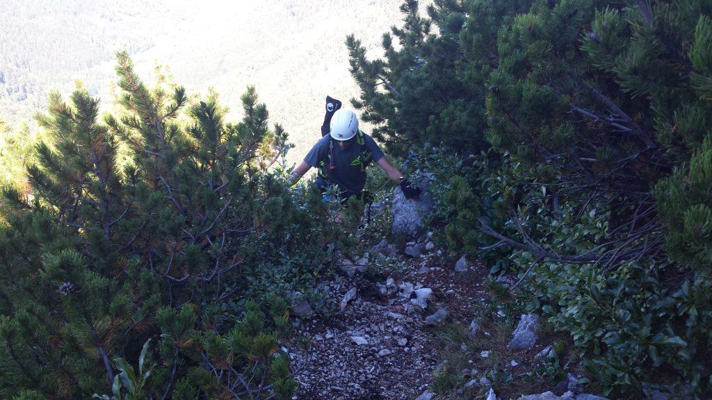 Stefan climbs on Wildfährte