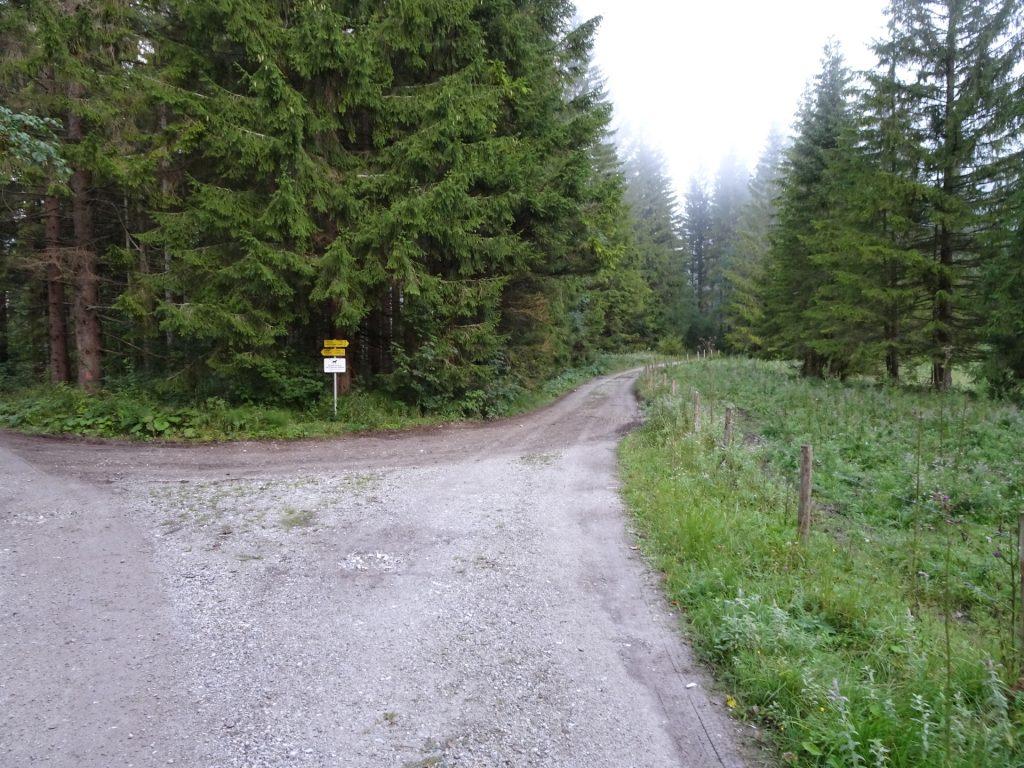 "Keep right here (towards ""Hochschwabgipfel"")"