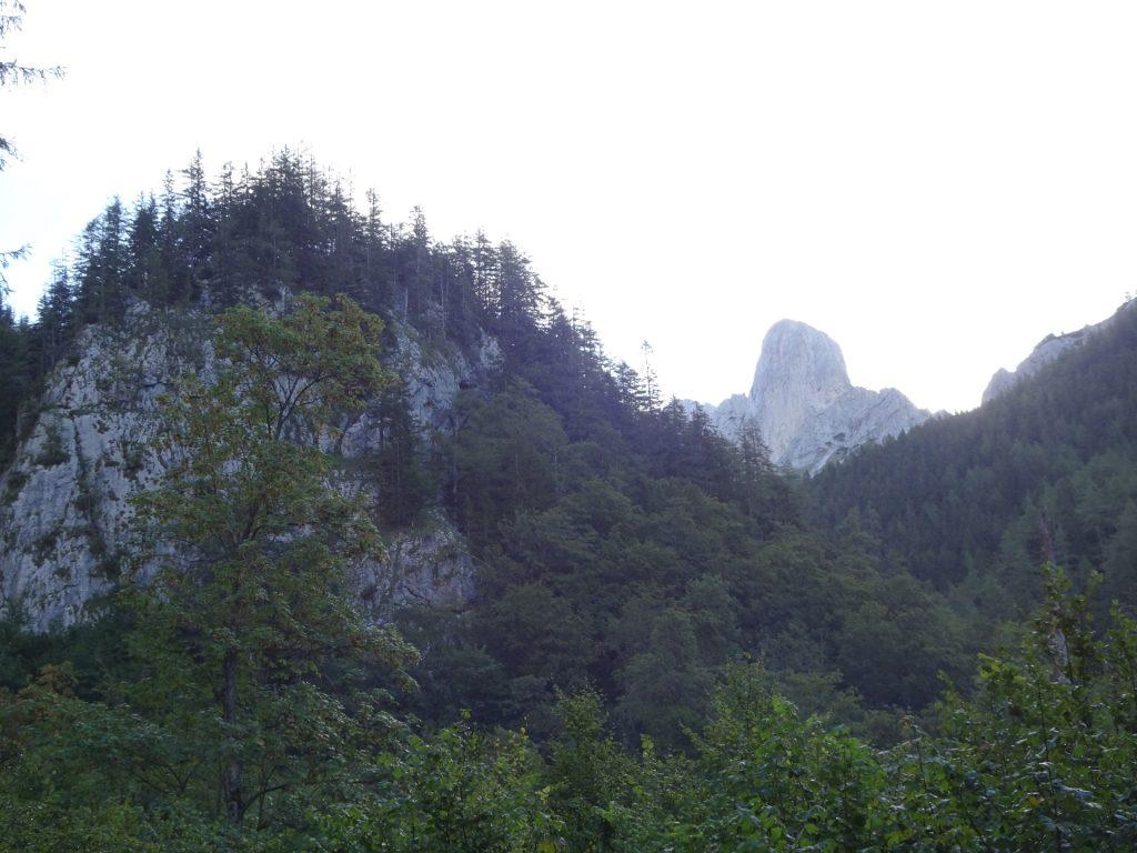 """View towards the """"Festlbeilstein"""" rock"""