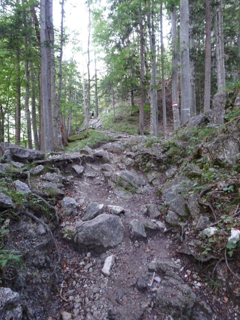 """Trail towards """"Hochschwab"""""""