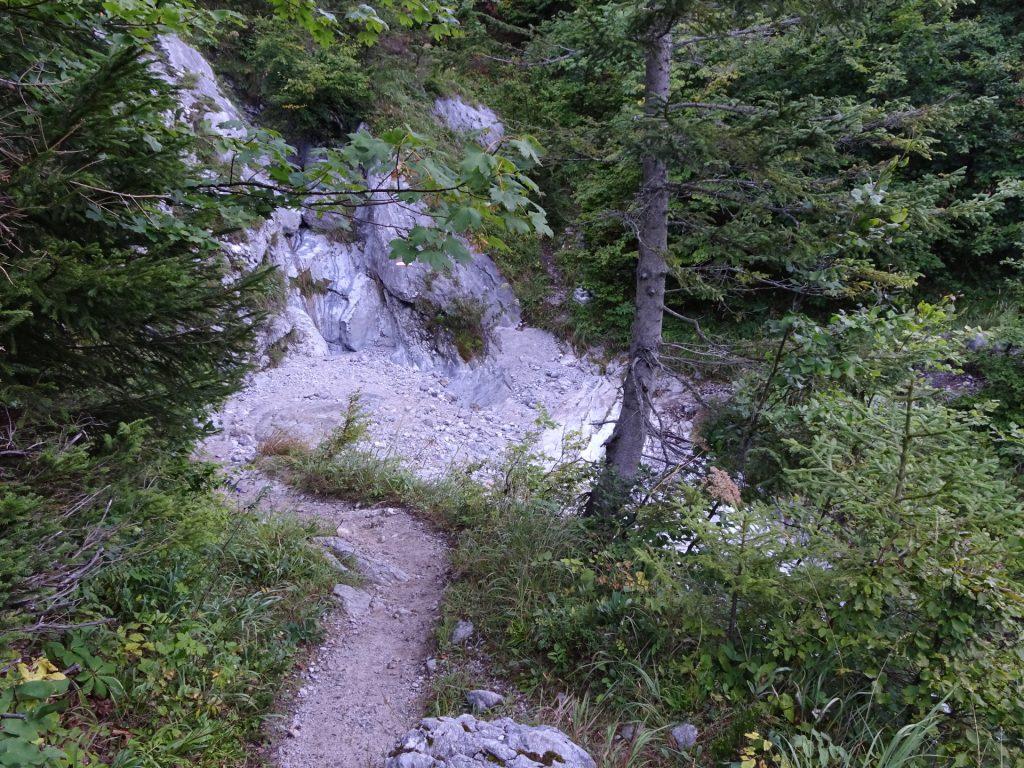 "On the trail towards the ""Hochschwab"""