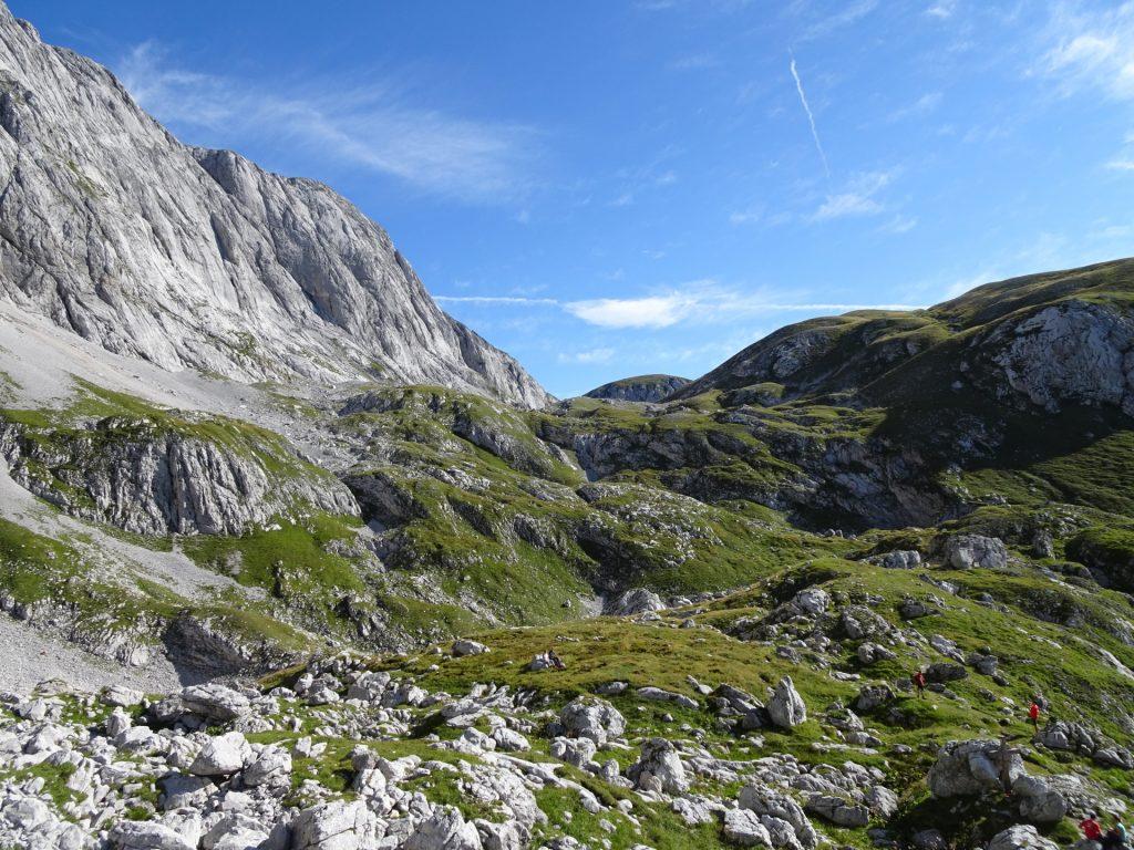 Amazing mountain pasture