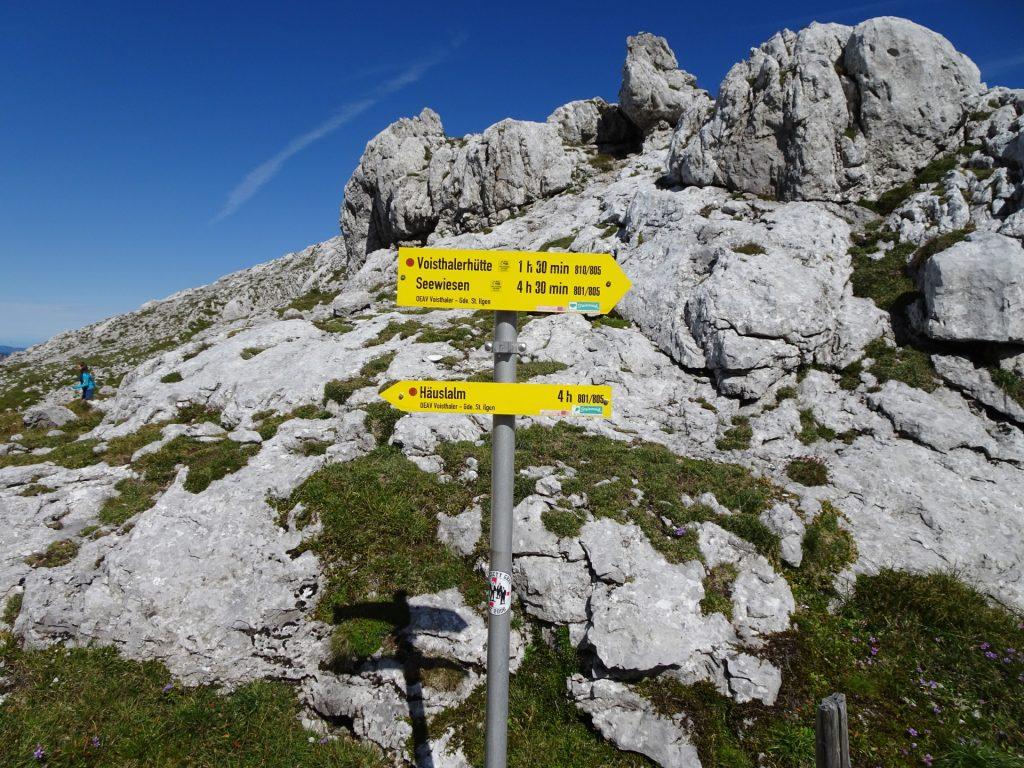 """Follow the trail towards """"Häuslalm"""""""