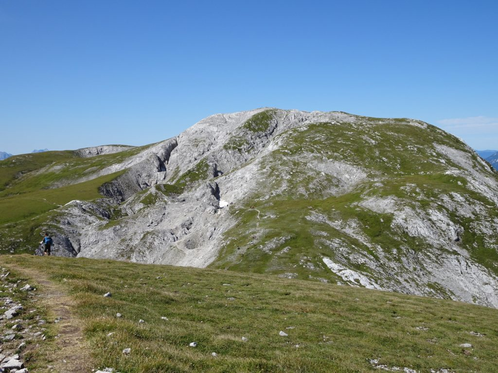 """Beautiful mountain pasture seen from the trail towards """"Häuslalm"""""""