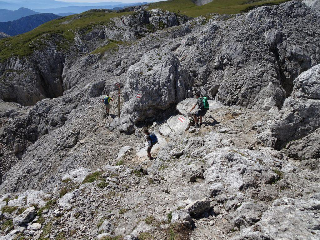"A bit of (easy) climbing on the trail towards ""Häuslalm"""