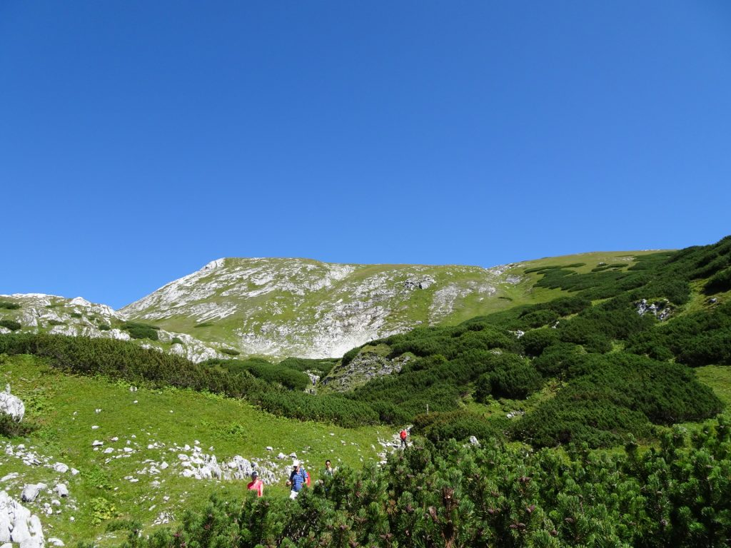 """View back from the trail towards """"Häuslalm"""""""