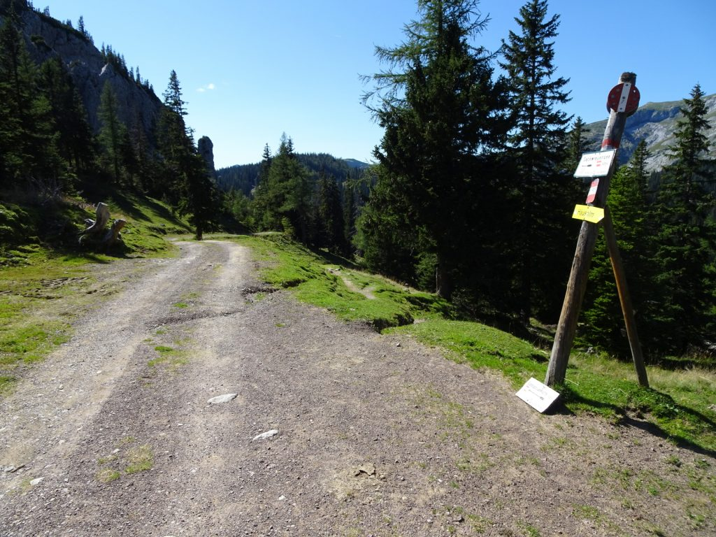 """Follow the small trail on the right downwards to the """"Sackwiesensee"""" lake"""