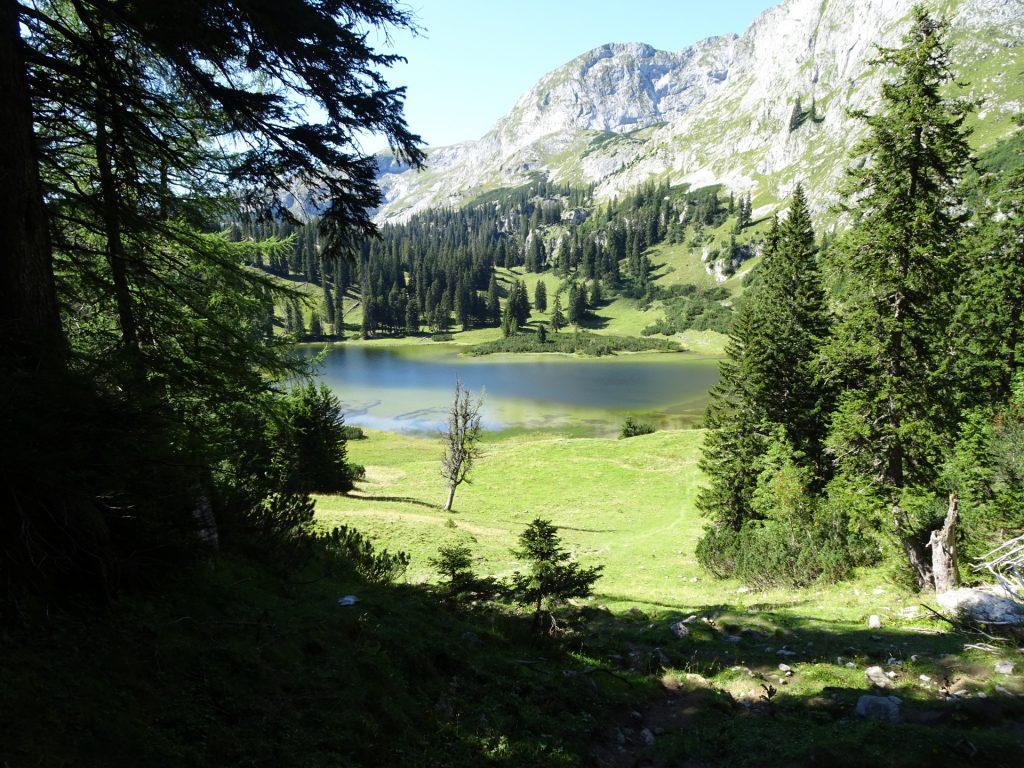 """The """"Sackwiesensee"""" (lake)"""