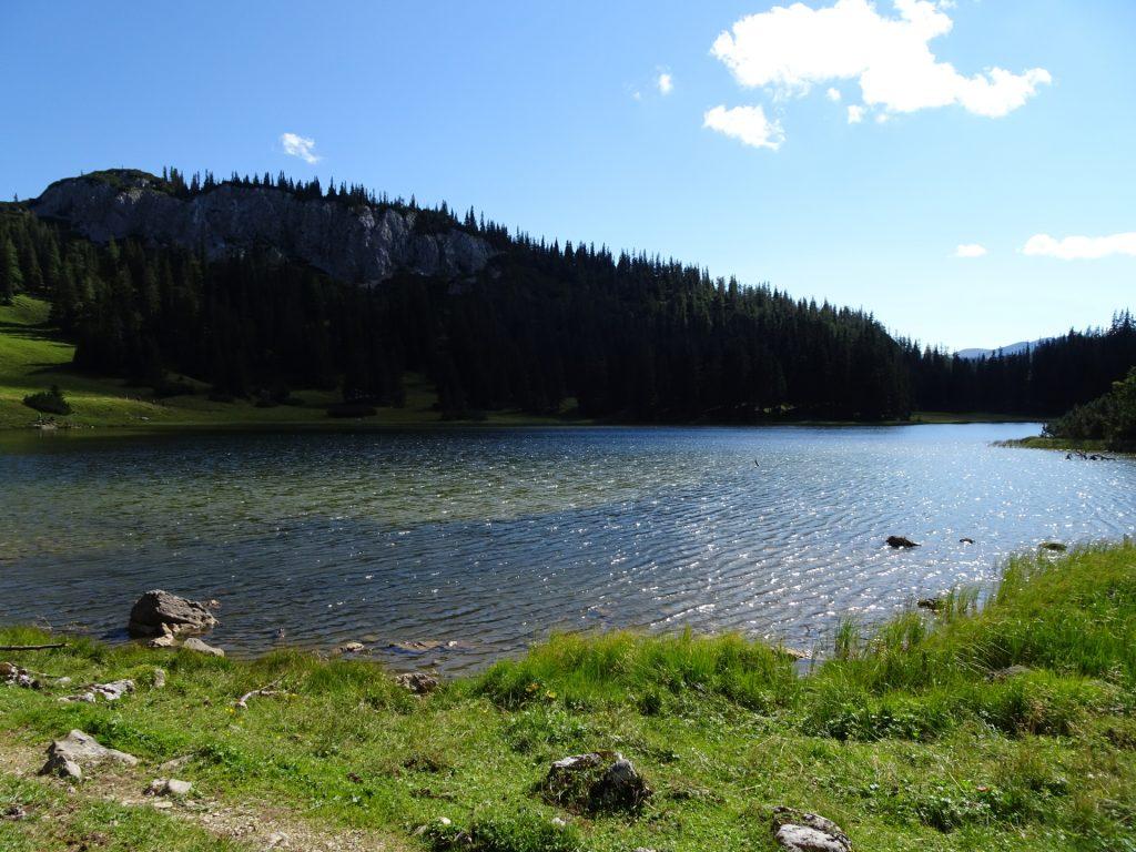 """Enjoying a break at the """"Sackwiesensee"""""""