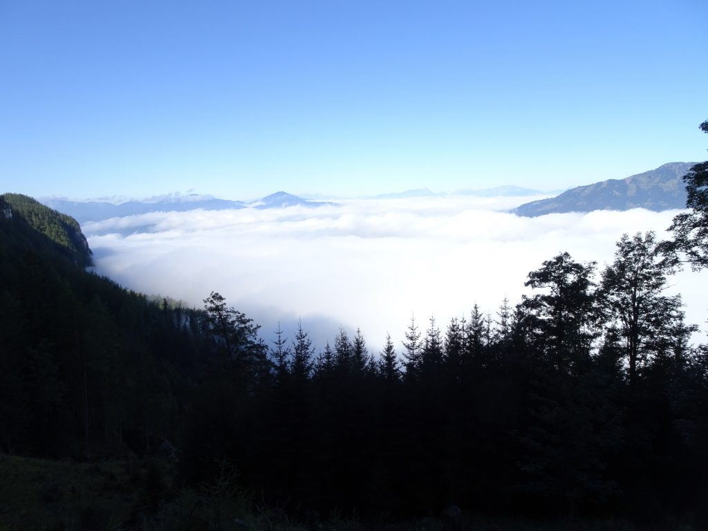 Above the clouds in the valley
