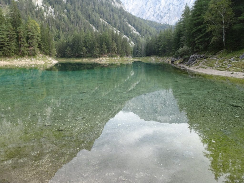 """The amazing clear """"Grüner See"""""""