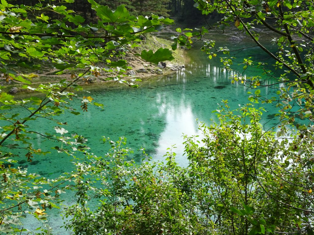 """The amazing """"Grüner See"""""""