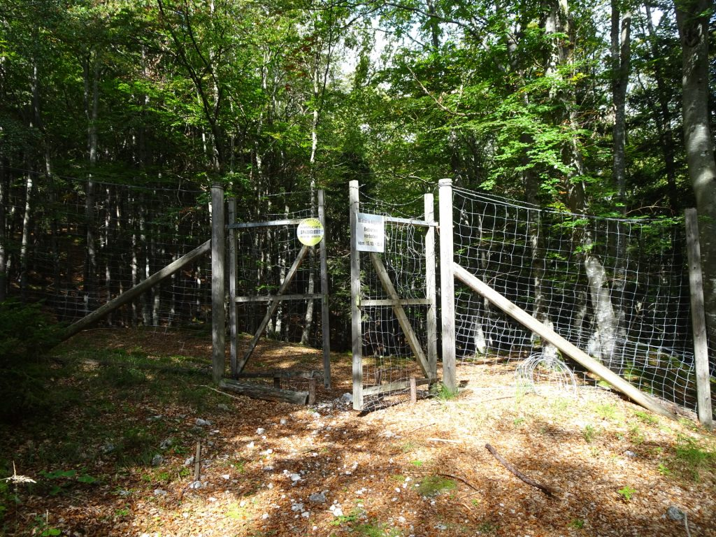 The gate (closed during wildlife protection season) - only pass if open!