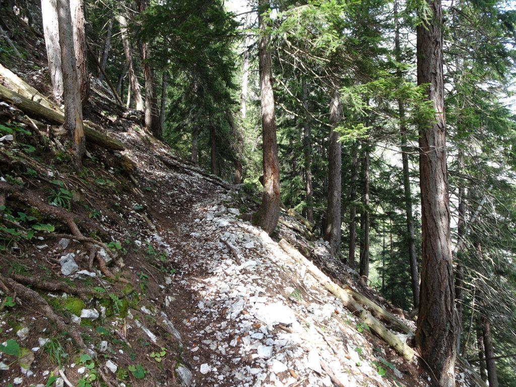 "Steep trail towards ""Pribitz"""
