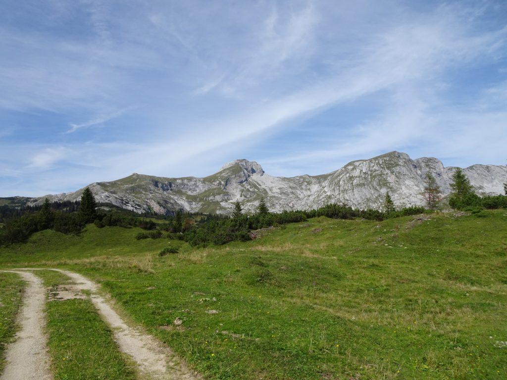 "Trail towards ""Sonnschienalm"""