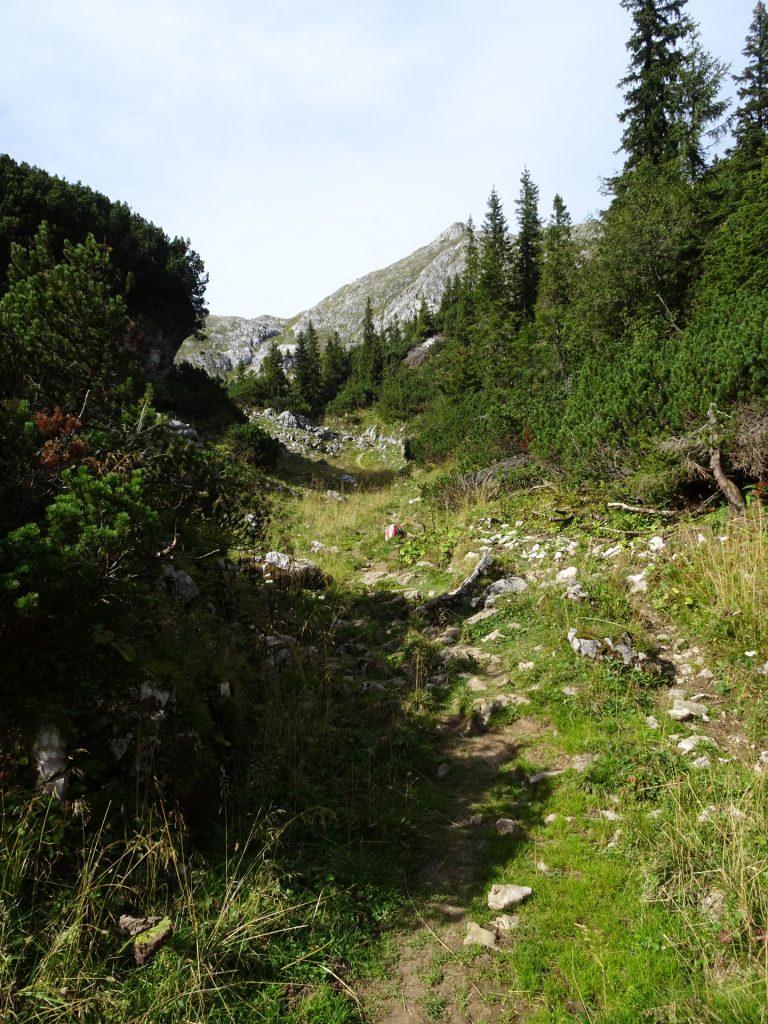 "Trail towards ""Ebenstein"""